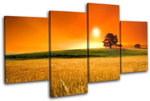 Field Sunset Landscapes - 13-2212(00B)-MP04-LO